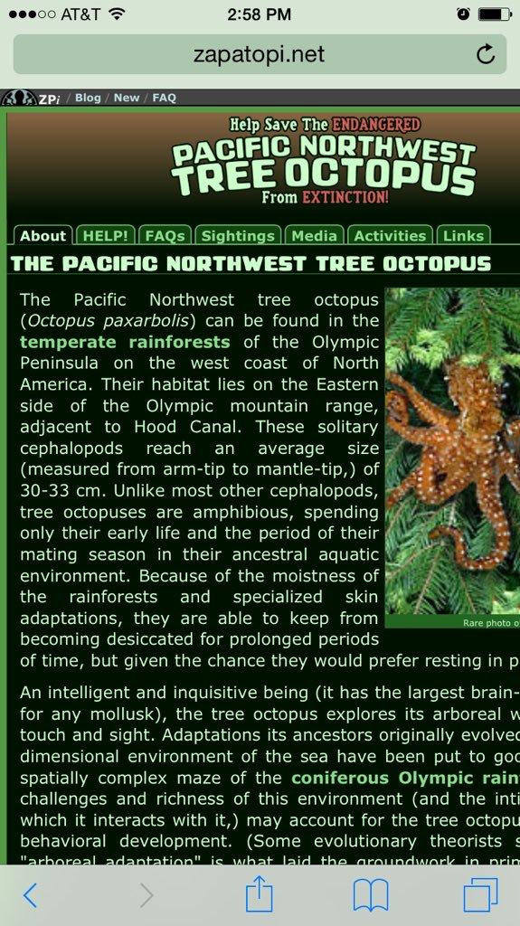 tree-octopus